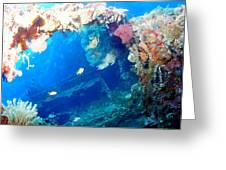 Coral Archways Greeting Card