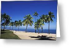 Coral Coast Palms Greeting Card