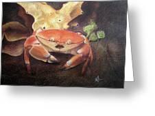 Coral Crab Greeting Card