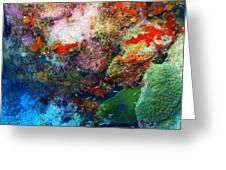 Coral Eel Greeting Card
