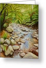Coranderrk Creek Yarra Ranges Greeting Card