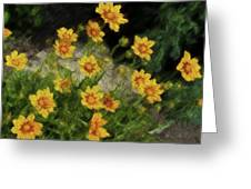 Coreopsis Tickseed Greeting Card
