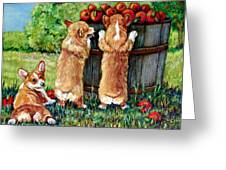Corgi Apple Harvest Pembroke Welsh Corgi Puppies Greeting Card by Lyn Cook