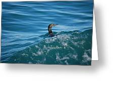 Cormorant In The Water Greeting Card