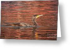 Cormorant On Autumn Red Greeting Card