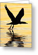 Cormorant Silhouette Greeting Card