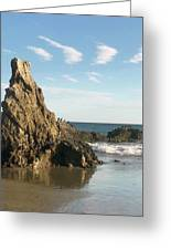 Cormorants At El Madador Beach Greeting Card