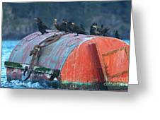Cormorants On A Barrel Greeting Card
