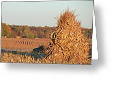 Corn At Harvest Greeting Card