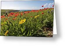 Corn Marigold And Poppies Greeting Card