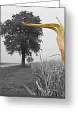 Corn Tree Greeting Card