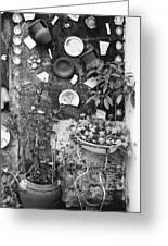 Corner Garden - Sao Miguel - Azores Greeting Card