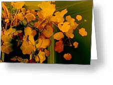 Corner In Green And Gold Greeting Card