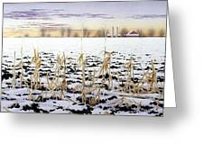 Cornfield In Winter Greeting Card