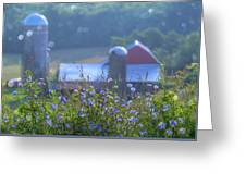 Cornflower And Barn Greeting Card