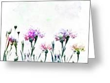 Cornflowers Watercolor  Greeting Card