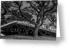 Corolla Bridge Greeting Card