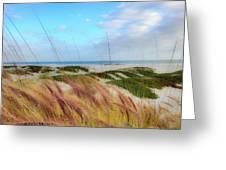 Coronado Island Greeting Card