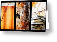 Corrugated Iron Triptych #10 Greeting Card