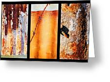 Corrugated Iron Triptych #8 Greeting Card