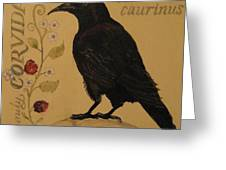 Corvus Caurinus Greeting Card