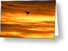 Corvus Silhouette  Greeting Card