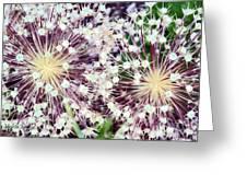 Cosmic Blooms Greeting Card