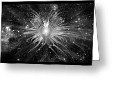 Cosmic Heart Of The Universe Bw Greeting Card