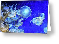 Cosmic Jellies Greeting Card