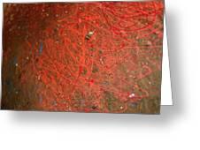 Cosmos Artography 560044 Greeting Card