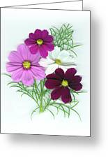Cosmos Bouquet Greeting Card