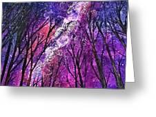Cosmos Greeting Card