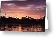 Costa Rica 052 Greeting Card