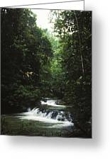Costa Rica Waterfall In The Carocavado Greeting Card by James Forte