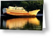 Costa Rica Wreck 4 Greeting Card
