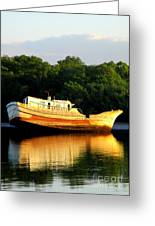 Costa Rica Wreck 5 Greeting Card