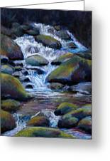 Costa Rican Stream Greeting Card