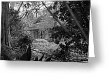 Cottage Black White Gardens Louisiana  Greeting Card
