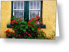 Cottage Window, Co Antrim, Ireland Greeting Card
