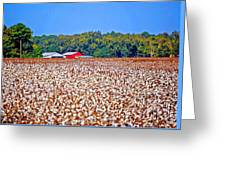 Cotton And The Red Barn Greeting Card