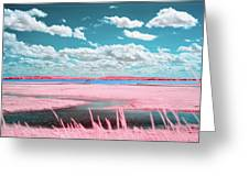 Cotton Candy Marsh Greeting Card