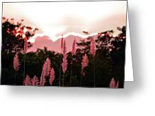 Cotton Candy Sunset 4 Greeting Card
