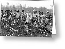 Cotton Planter & Pickers, C1908 Greeting Card
