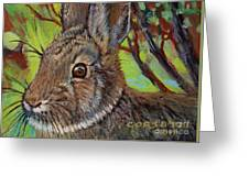 Cotton Tail Rabbit Greeting Card