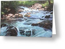Cotton Wood Creek #4 Greeting Card