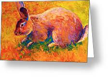 Cottontail I Greeting Card by Marion Rose