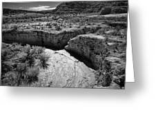Cottonwood Creek Water Drainage 1 Bw Greeting Card