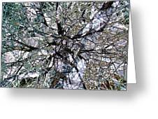 Cottonwood Montage Greeting Card