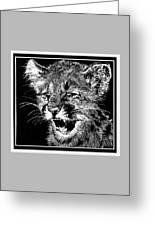 Cougar Cub Greeting Card