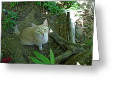 Cougar In The Woods Greeting Card